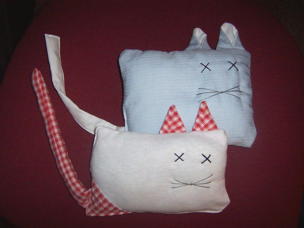 gattino morbido