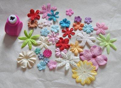 Inserzione riservata Chia Fiori per scrapbooking+punch farfalla
