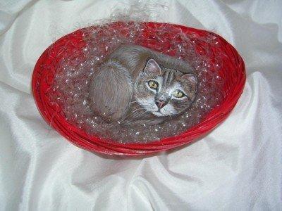 gattino più cestino