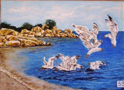 gabbiani in riva al mare