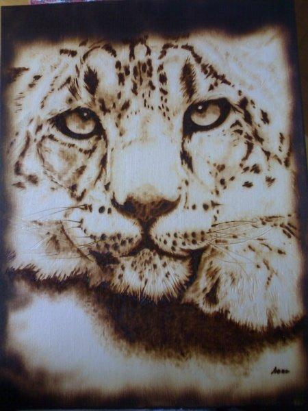 Quadro Cucciolo di Tigre