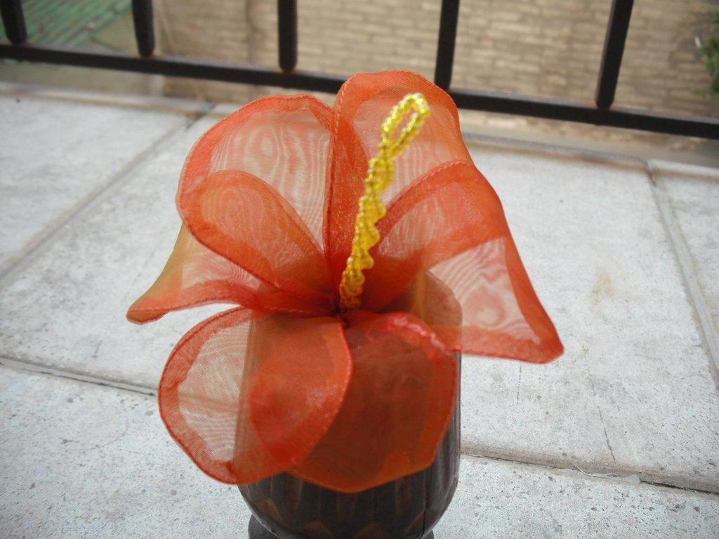 fiore-ibiscus