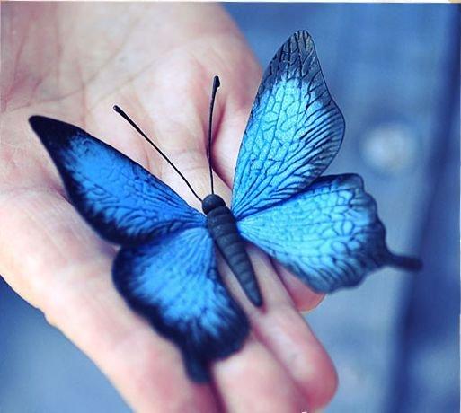 """Farfalla"""" da argilla"""