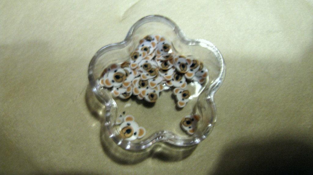 Conf.30/35pz fettine  per decorazione Orsetto bianco