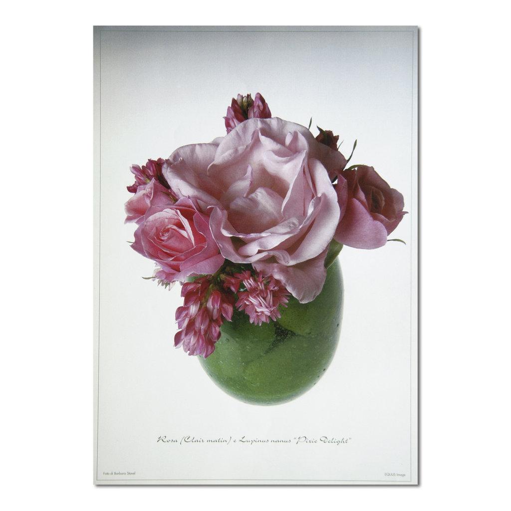 STAMPA LASER DI UNA MIA FOTO DI COMPOSIZIONE FLOREALE: rose e lupini