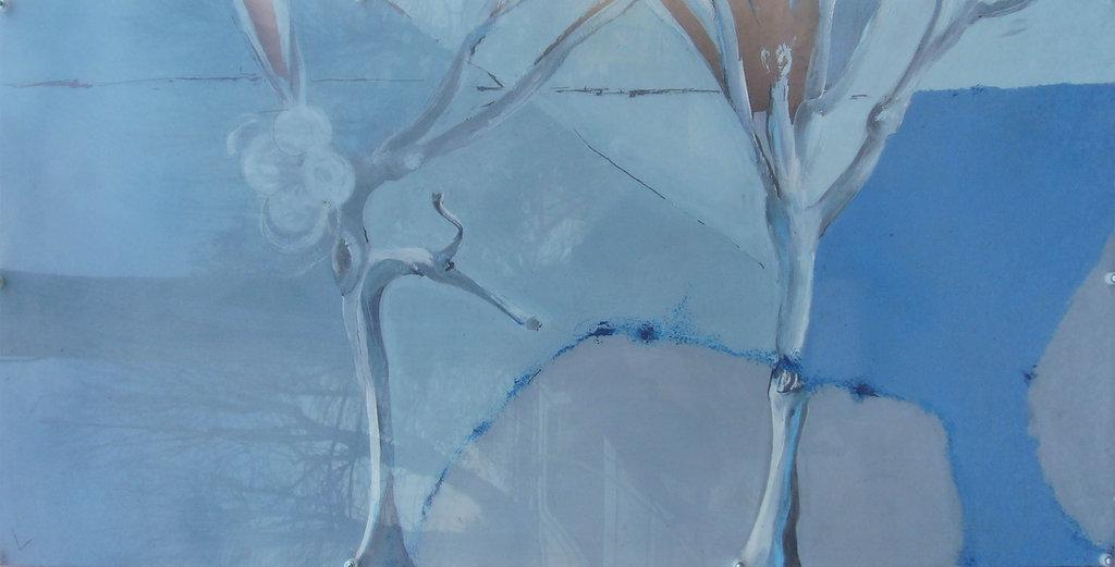 alberi su plexiglass