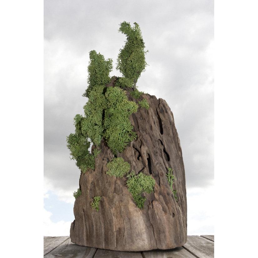 OGGETTO decorativo fatto a mano che commemora la natura