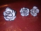 rosa bicolore...
