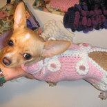 """cappottino per chihuahua o cagnolini di piccola taglia """"alamari"""""""