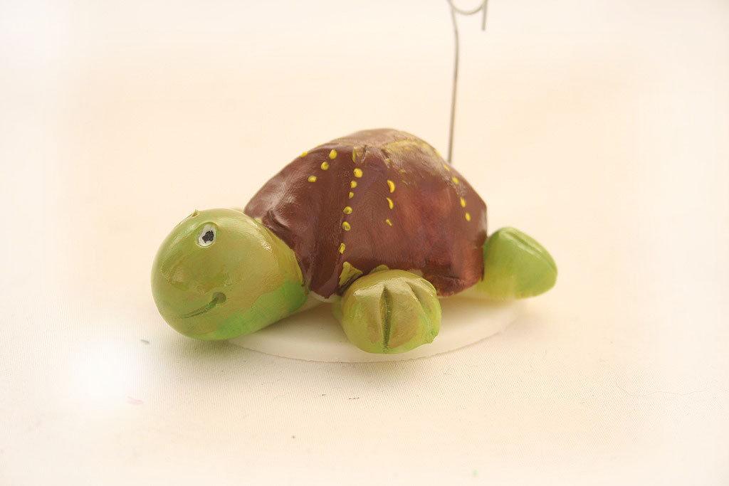 Tartaruga portafoto e portafortuna