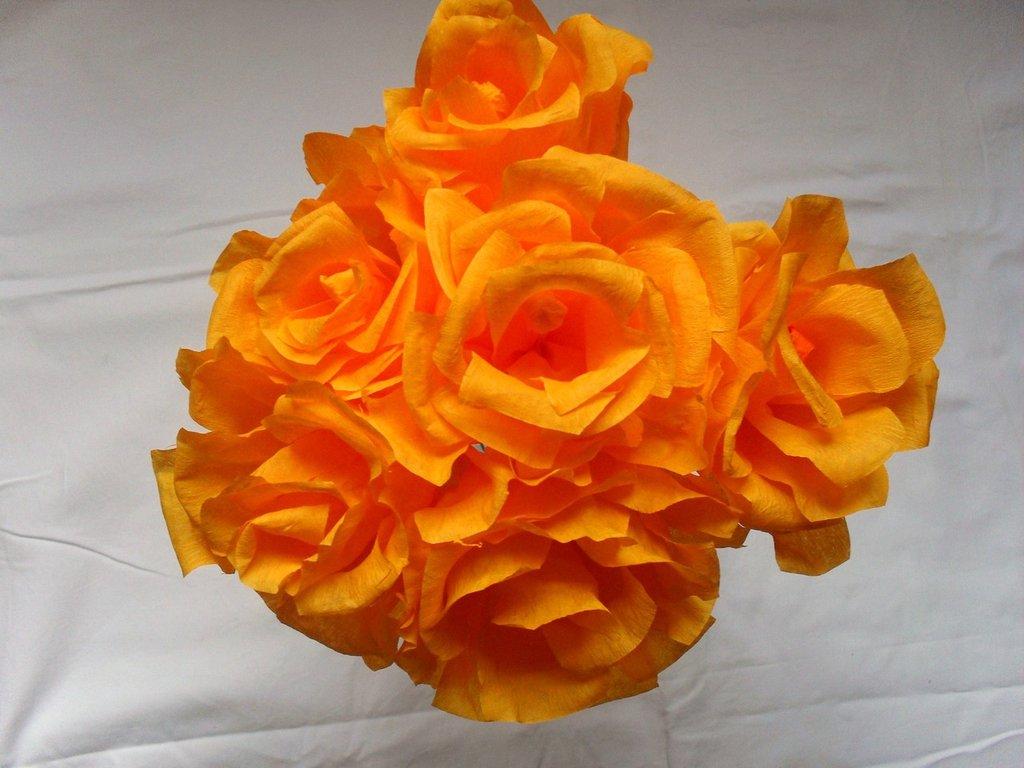 rose arancio chiaro