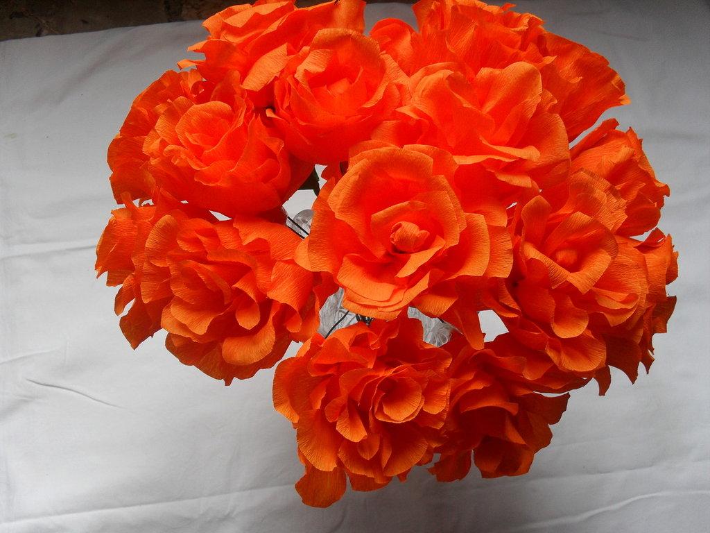 rose arancio scuro