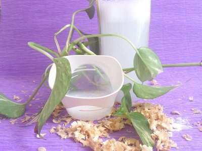 Detergente bagno, pavimenti 100% biodegradabile anticalcare, disinfettante 1 litro