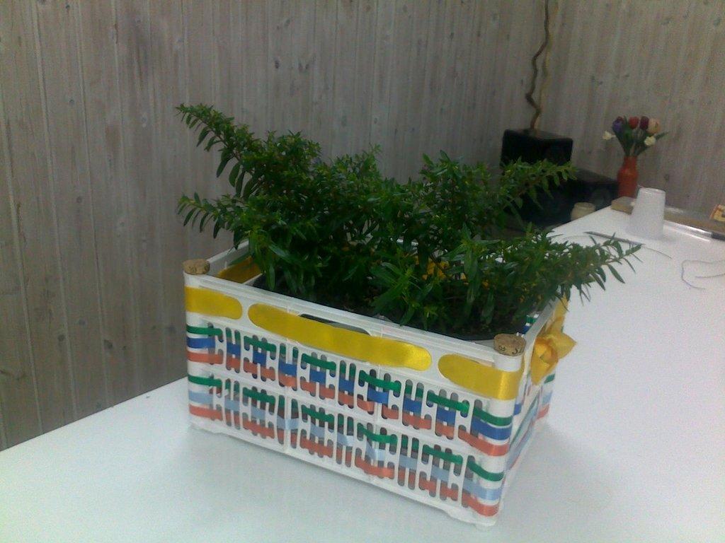 Cesta colorata porta piante
