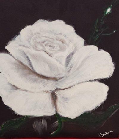 """Quadro - """"Rosa bianca"""""""