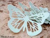 Farfalla Celeste