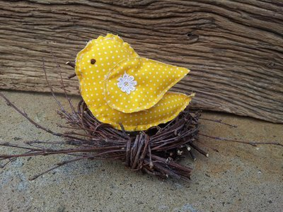 Pulcino nel nido