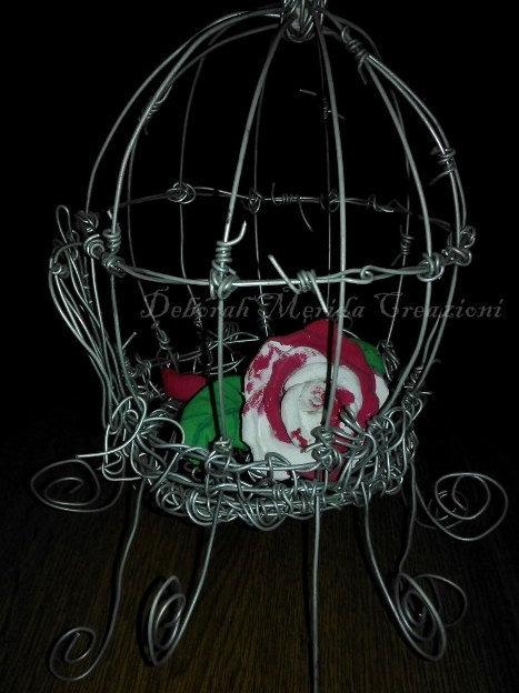 Una gabbia di violenza e una rosa così delicata.