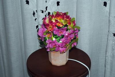 lampada primavera, cactus,volo di farfalle