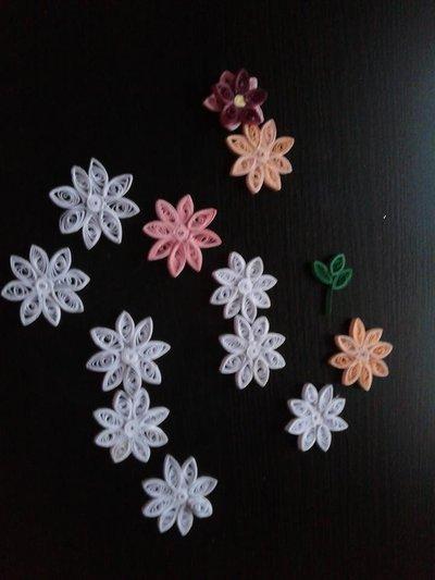Materiale fiori per diverse decorazioni,orecchini,bigliettini.