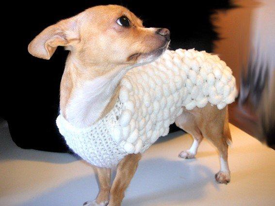 "cappottino per chihuahua ""pom pom"""