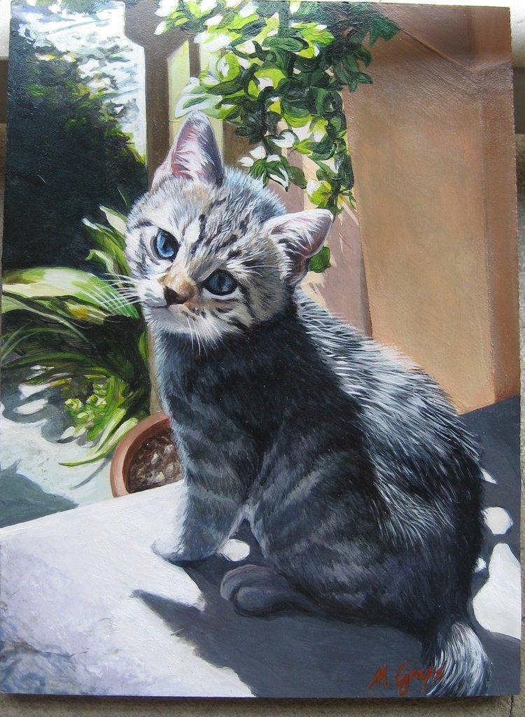 Dipinto: Piccolo gatto al sole