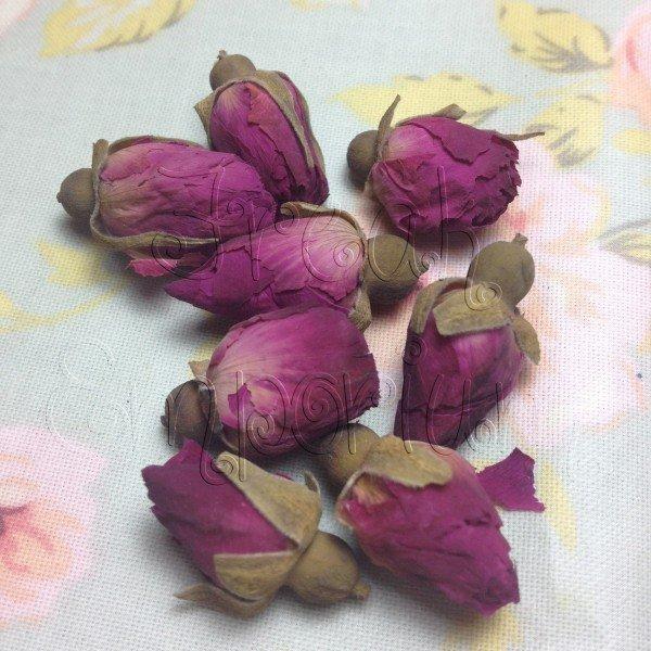 Boccioli di rosa non trattati - 3 pezzi