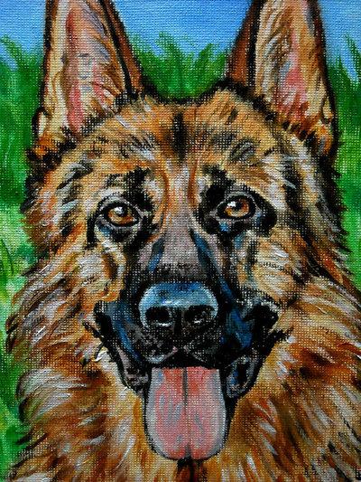 Ritratto cane pastore tedesco acrilico per la casa e