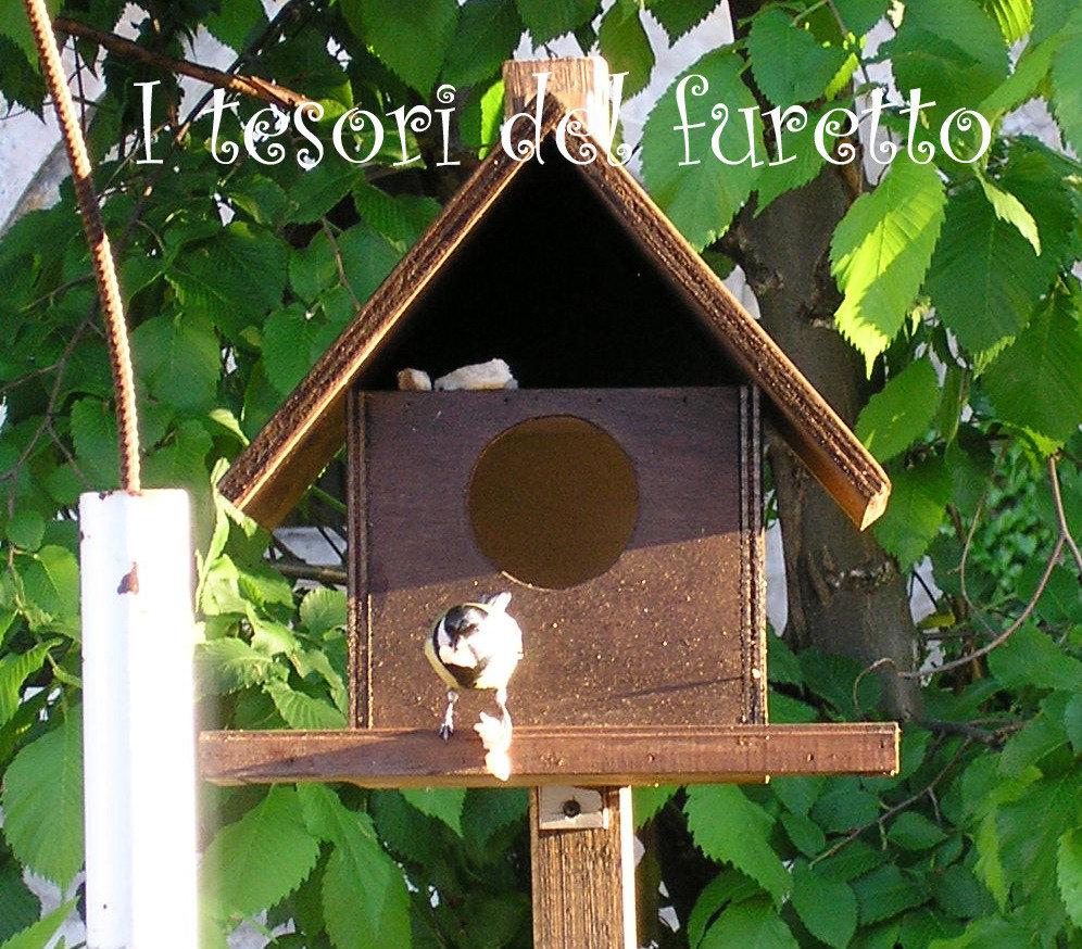spesso Casetta Nido Rifugio Per uccellini in legno tinta noce - Per la ca  SM73