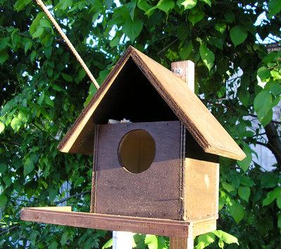 Casetta Nido Rifugio Per Uccellini In Legno Tinta Noce Per La Ca