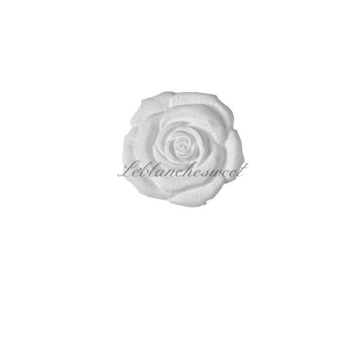 Rose medium rose,gesso profumato