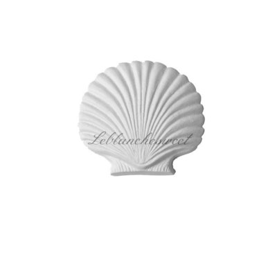 Marine shell,gesso profumato