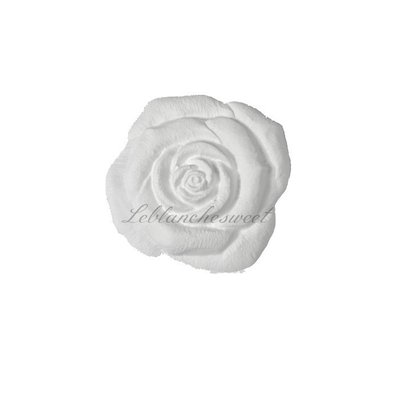 Rose big rose,gesso profumato