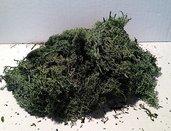 Muschio sintetico verde scuro 40 gr