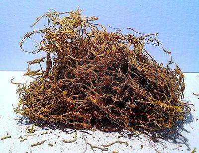 Tillantia color giallo 20 gr
