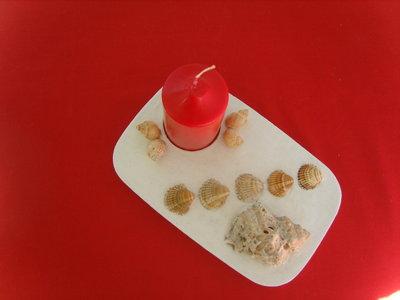 Porta candela in gesso decorata con le conchiglie