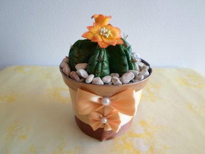cactus con fiore arancio fatti a mano con pasta di mais,soprammobile, ideale anche  come idea regalo ad un prezzo veramente speciale