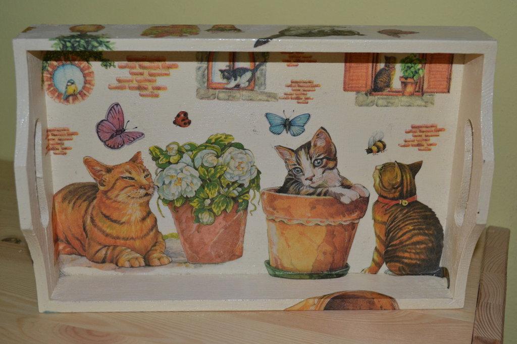 Vassoio gattini