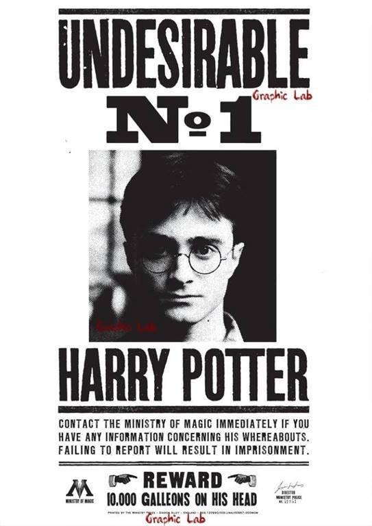 Locandina di Ricerca di Harry Potter l'Indesiderabile Numero 1