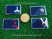 "Lotto 4 copertine per miniature libri serie ""Twilight"""