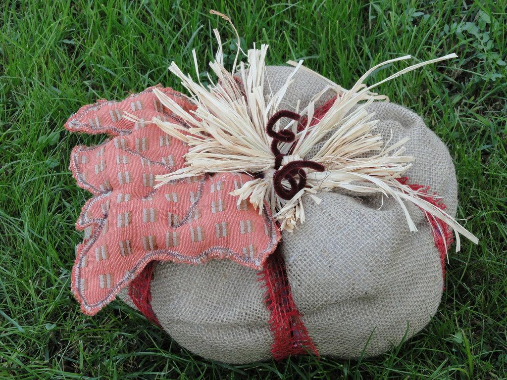 Zucca country in iuta