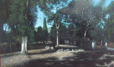 paesaggio campestre nei pressi di Maniace-LEONARDO FALZONE