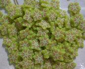 130 Fettine Frutto Stella da Polymer Clay Canes