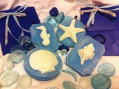 Targhette in legno blu Shabby-Chic tema mare: conchiglie in gesso. Per decorazione, bomboniere o regali.
