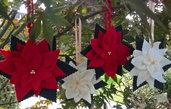 Natale - Stella di Natale