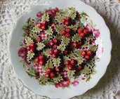 Agrifoglio Rosso - Holly