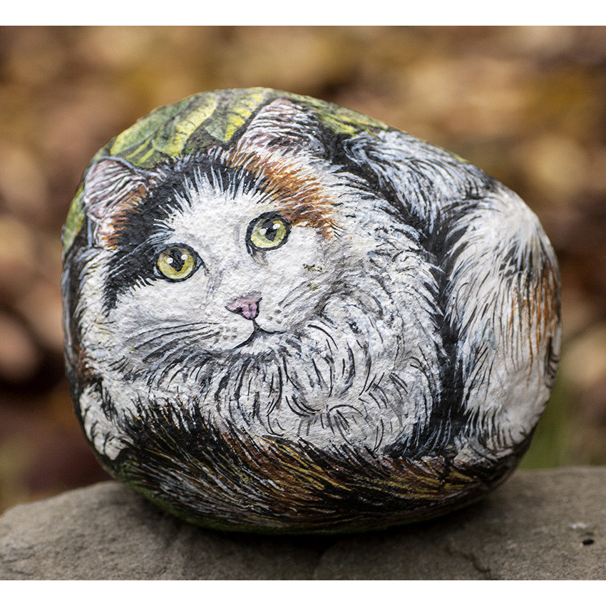 pietra di fiume dipinta con colori acrilici raffigurante un gatto a pelo lungo