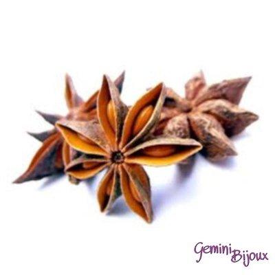 Anice stellato uso decorativo confezione da 50 grammi