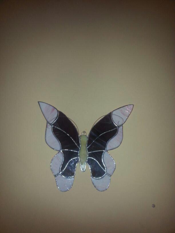 farfalla da muro