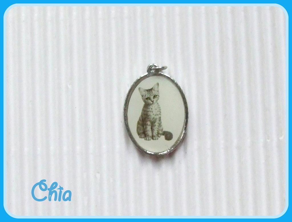 1 charm medaglione gattino vintage